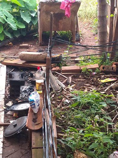 Crianças resgatadas por Conselho Tutelar vão morar com tia em Guaíra