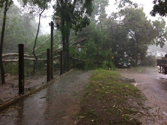 Temporal provoca estragos em Umuarama e região