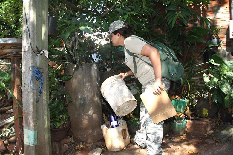Em um mês, números de casos de  dengue crescem 100% em Umuarama