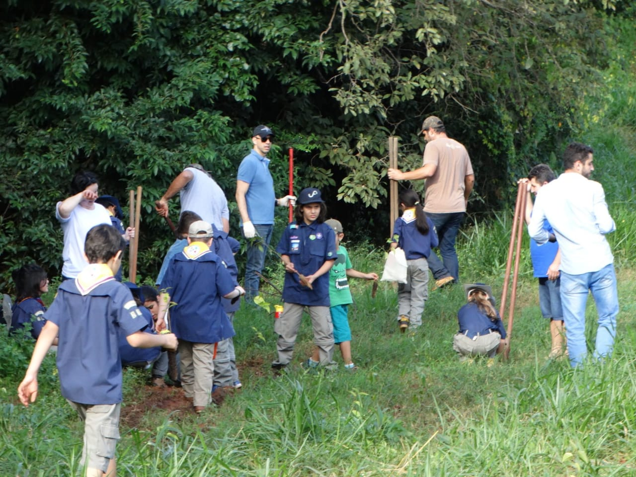 MUTECO Escoteiros reflorestam área de  preservação no Parque D. Pedro