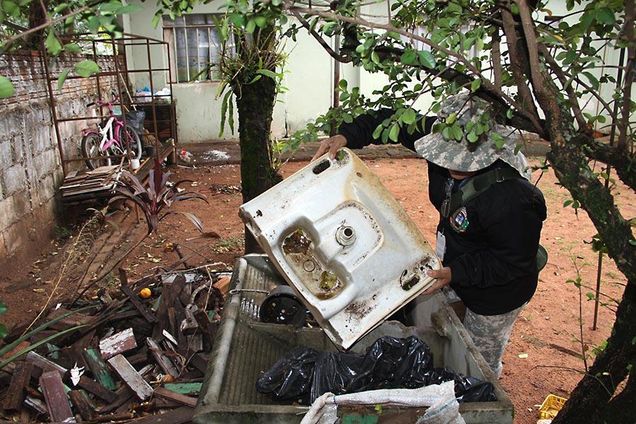 dengue-umuarama