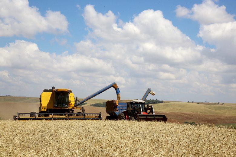Safra de grãos do Paraná deve alcançar 23,4 milhões de toneladas