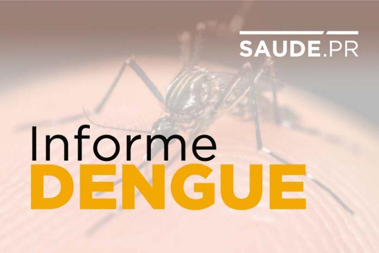 Estudo sinaliza tendência de queda nos casos de dengue