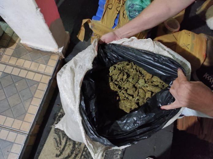 Polícia Civil de Umuarama autua cinco pessoas com 100 kg de maconha e ecstasy