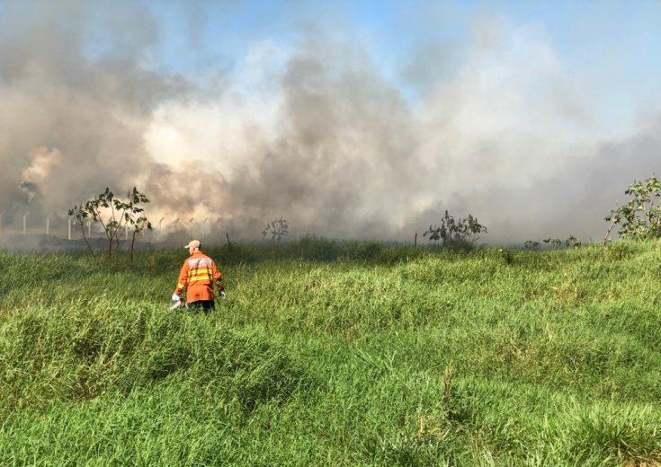 Bombeiros registram grande incêndio nos fundos do Aeroporto de Umuarama