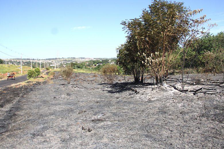 queimadas_umuarama